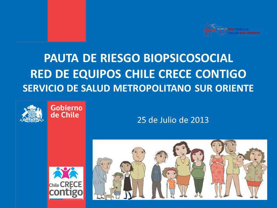PAUTA DE RIESGO BIOPSICOSOCIAL RED DE EQUIPOS CHILE CRECE CONTIGO SERVICIO DE SALUD METROPOLITANO SUR ORIENTE 25 de Julio de 2013