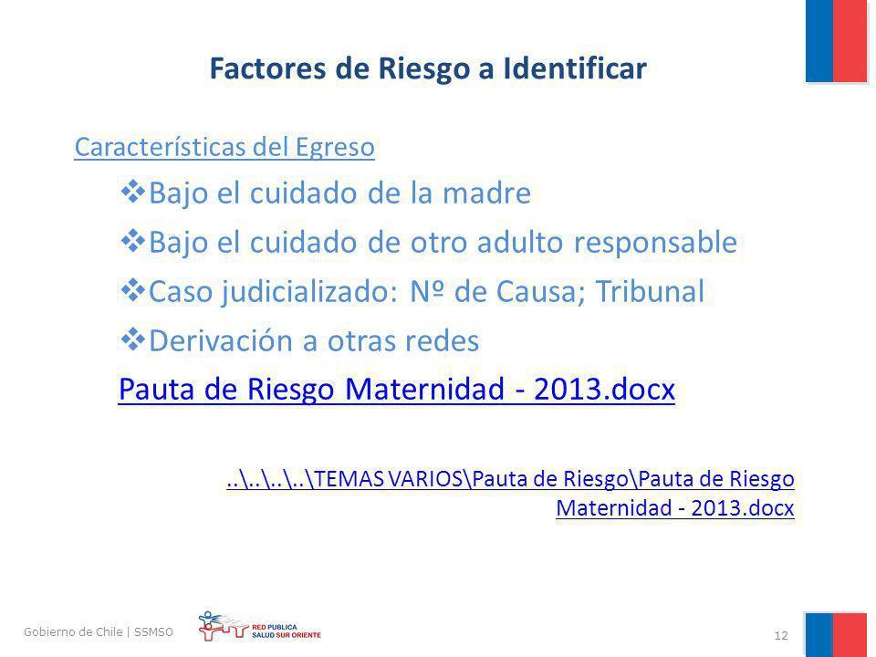 12 Gobierno de Chile | SSMSO Factores de Riesgo a Identificar Características del Egreso Bajo el cuidado de la madre Bajo el cuidado de otro adulto re
