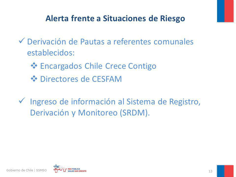 13 Gobierno de Chile | SSMSO Alerta frente a Situaciones de Riesgo Derivación de Pautas a referentes comunales establecidos: Encargados Chile Crece Co