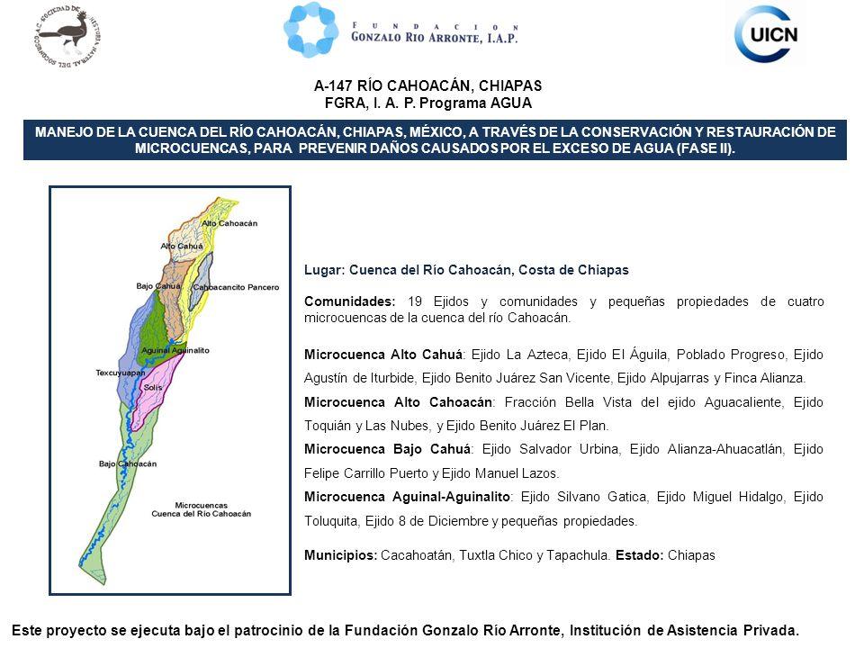 Lugar: Cuenca del Río Cahoacán, Costa de Chiapas Comunidades: 19 Ejidos y comunidades y pequeñas propiedades de cuatro microcuencas de la cuenca del r
