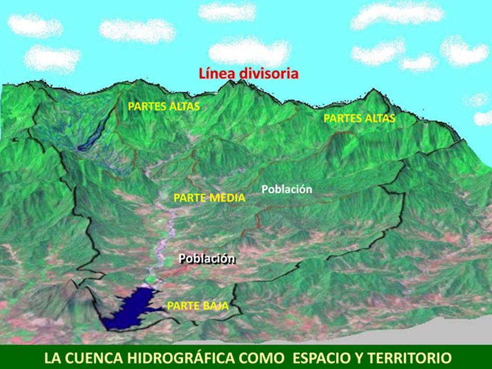 Este proyecto se ejecuta bajo el patrocinio de la Fundación Gonzalo Río Arronte, Institución de Asistencia Privada.