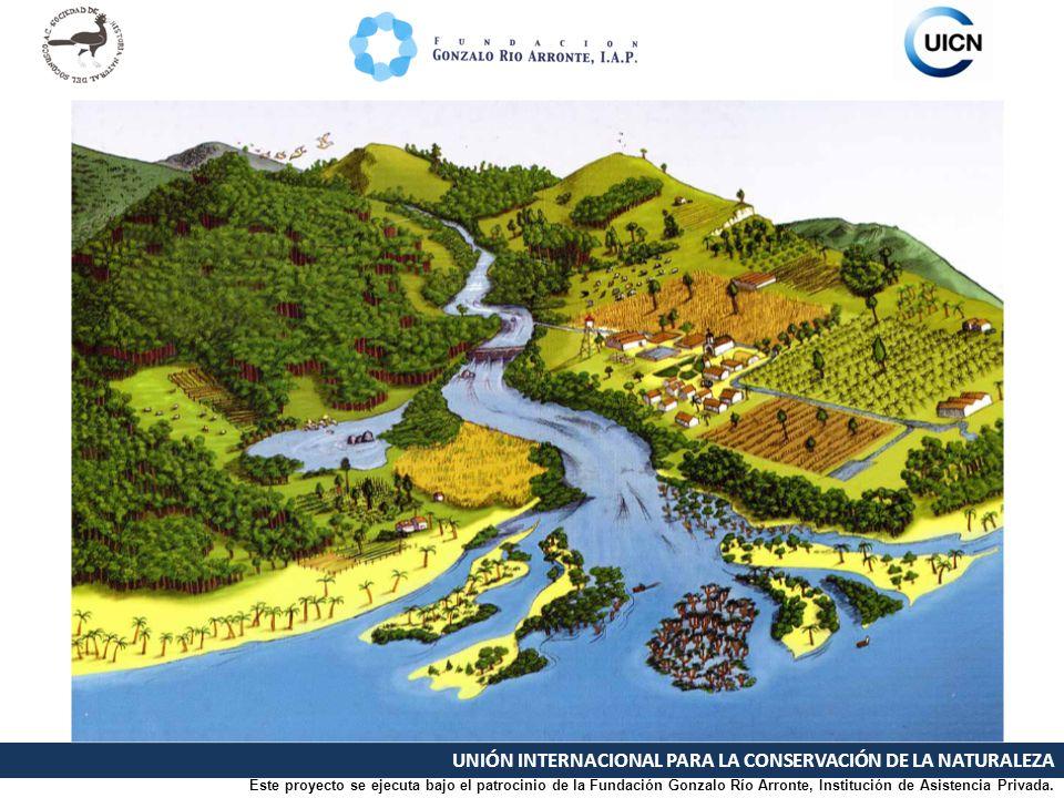 UNIÓN INTERNACIONAL PARA LA CONSERVACIÓN DE LA NATURALEZA Manejo integral de cuenca Este proyecto se ejecuta bajo el patrocinio de la Fundación Gonzalo Río Arronte, Institución de Asistencia Privada.