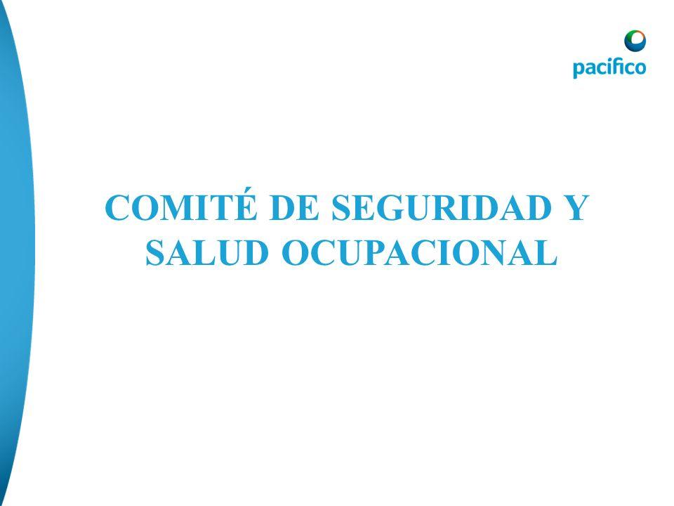 COMITÉ DE SEGURIDAD Y SALUD OCUPACIONAL