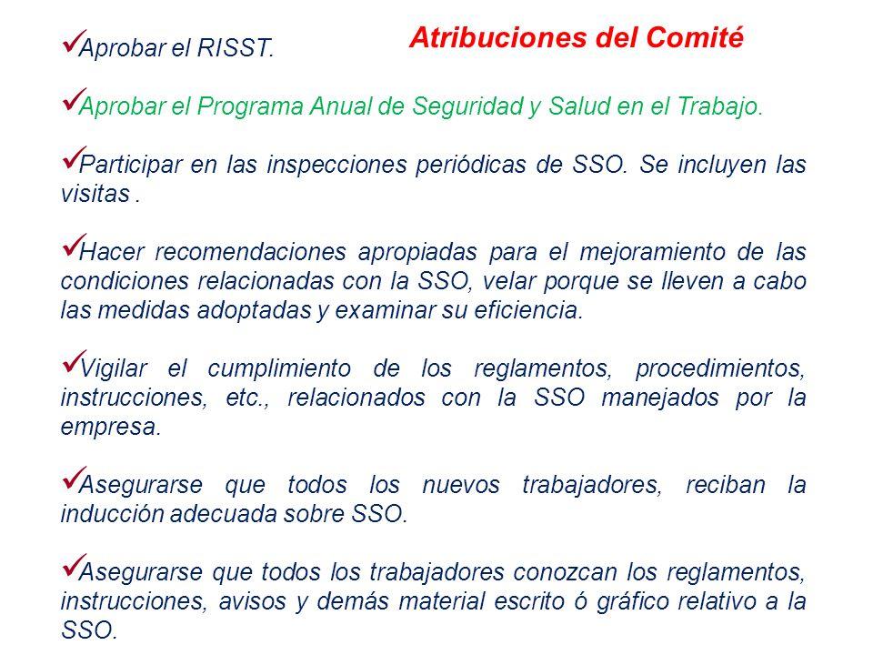 Aprobar el RISST. Aprobar el Programa Anual de Seguridad y Salud en el Trabajo. Participar en las inspecciones periódicas de SSO. Se incluyen las visi
