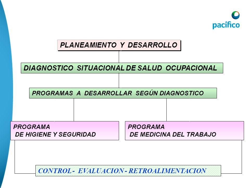 PLANEAMIENTO Y DESARROLLO DIAGNOSTICO SITUACIONAL DE SALUD OCUPACIONAL PROGRAMAS A DESARROLLAR SEGÚN DIAGNOSTICO PROGRAMA DE HIGIENE Y SEGURIDAD PROGR