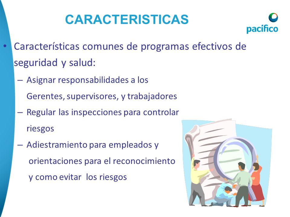 CARACTERISTICAS Características comunes de programas efectivos de seguridad y salud: – Asignar responsabilidades a los Gerentes, supervisores, y traba