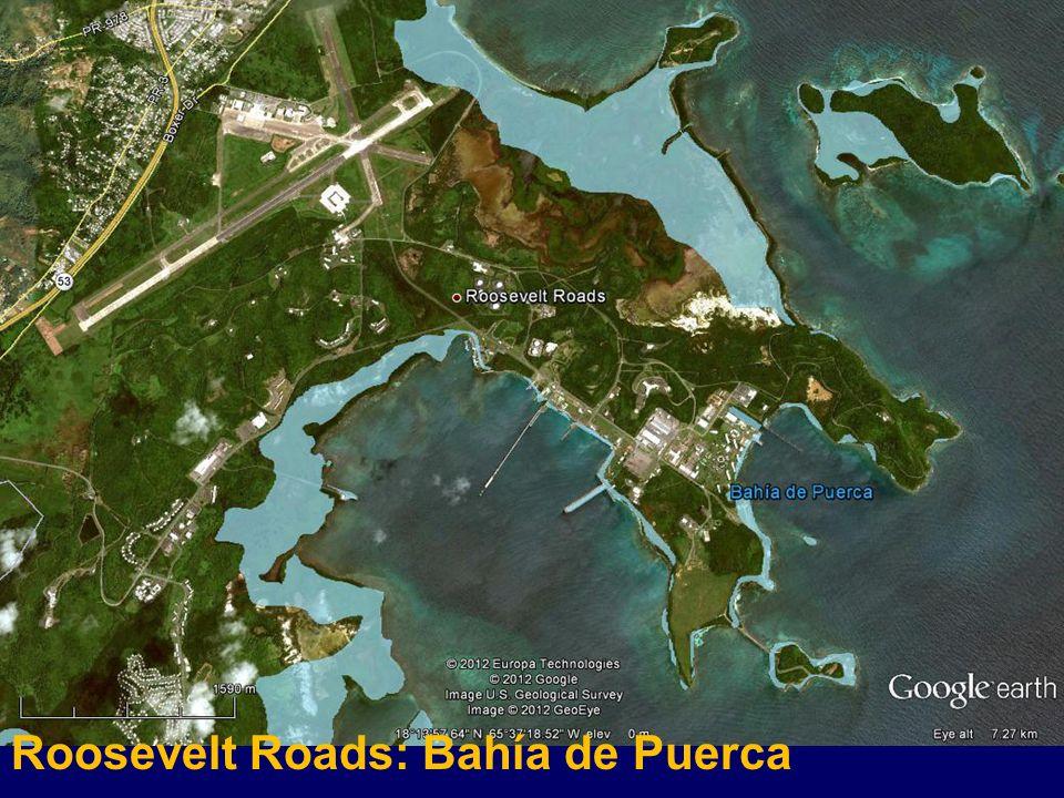 Roosevelt Roads: Bahía de Puerca