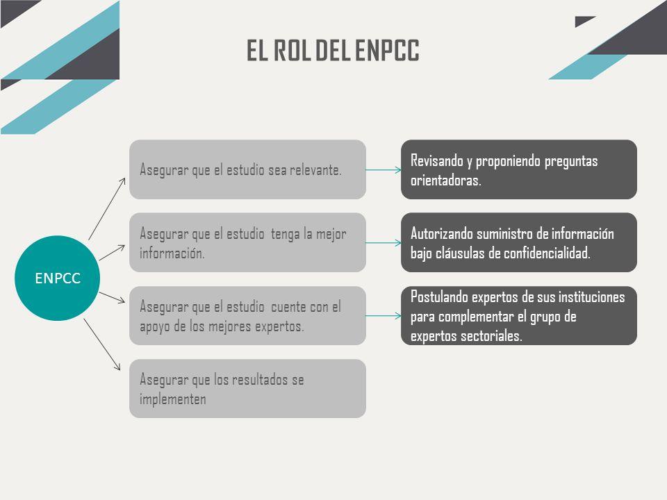 EL ROL DEL ENPCC ENPCC Asegurar que el estudio sea relevante. Asegurar que el estudio tenga la mejor información. Asegurar que el estudio cuente con e