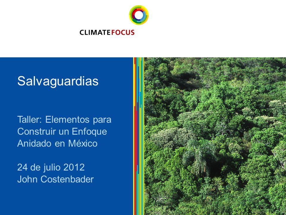 11 Taller: Elementos para Construir un Enfoque Anidado en México 24 de julio 2012 John Costenbader Salvaguardias