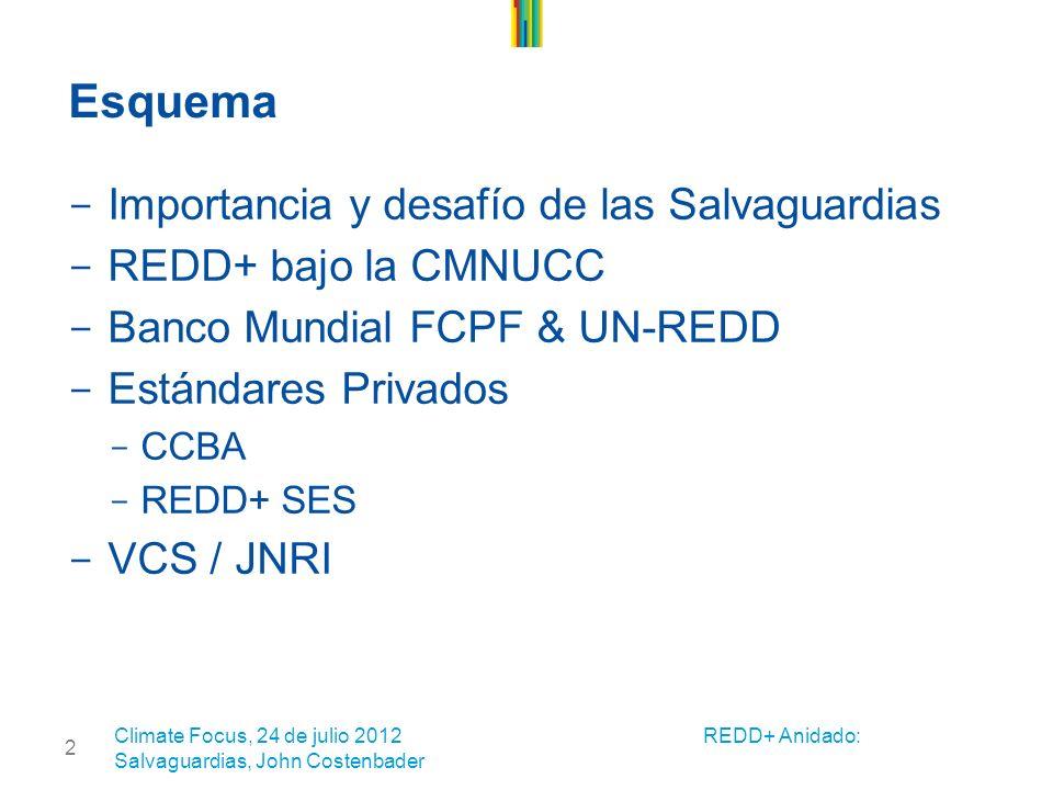 2 Esquema - Importancia y desafío de las Salvaguardias - REDD+ bajo la CMNUCC - Banco Mundial FCPF & UN-REDD - Estándares Privados – CCBA – REDD+ SES - VCS / JNRI Climate Focus, 24 de julio 2012 REDD+ Anidado: Salvaguardias, John Costenbader