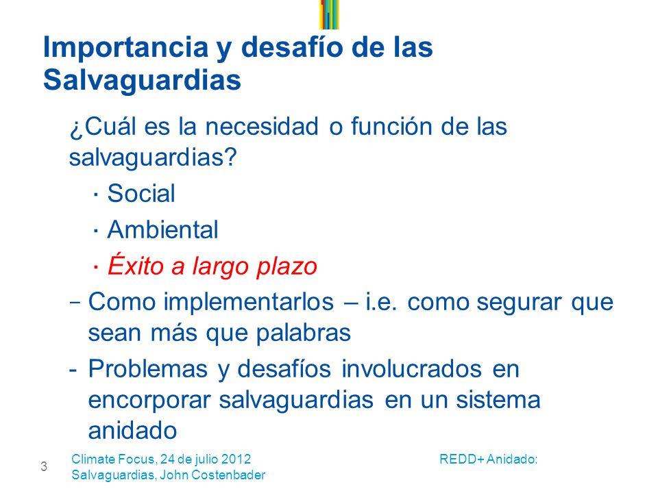 3 Importancia y desafío de las Salvaguardias ¿Cuál es la necesidad o función de las salvaguardias.