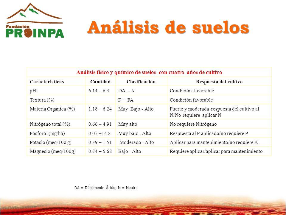 Análisis de suelos Análisis físico y químico de suelos con cuatro años de cultivo CaracterísticasCantidadClasificaciónRespuesta del cultivo pH6.14 – 6.3DA - NCondición favorable Textura (%)F – FACondición favorable Materia Orgánica (%)1.18 – 6.24Muy Bajo - AltoFuerte y moderada respuesta del cultivo al N/No requiere aplicar N Nitrógeno total (%)0.66 – 4.91Muy altoNo requiere Nitrógeno Fósforo (mg/ha)0.07 –14.8Muy bajo - AltoRespuesta al P aplicado/no requiere P Potasio (meq/100 g)0.39 – 1.51 Moderado - AltoAplicar para mantenimiento/no requiere K Magnesio (meq/100g)0.74 – 5.68Bajo - AltoRequiere aplicar/aplicar para mantenimiento DA = Débilmente Ácido; N = Neutro