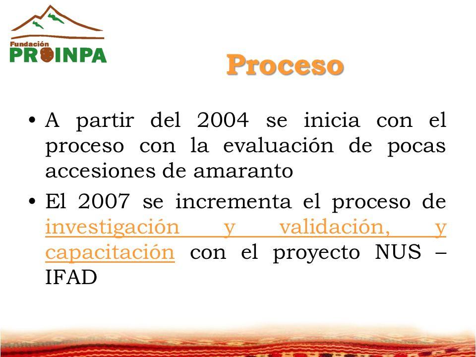 Proceso A partir del 2004 se inicia con el proceso con la evaluación de pocas accesiones de amaranto El 2007 se incrementa el proceso de investigación y validación, y capacitación con el proyecto NUS – IFAD