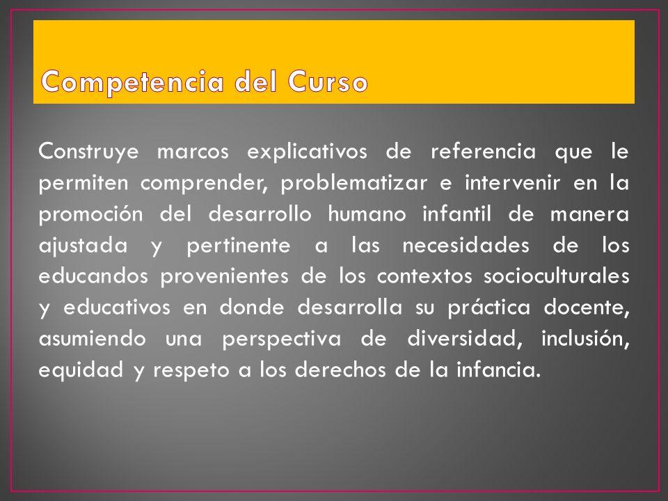 Construye marcos explicativos de referencia que le permiten comprender, problematizar e intervenir en la promoción del desarrollo humano infantil de m