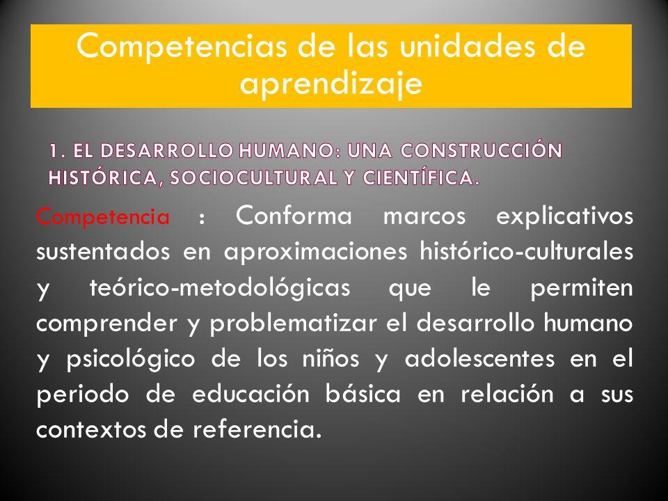 Competencia : Conforma marcos explicativos sustentados en aproximaciones histórico-culturales y teórico-metodológicas que le permiten comprender y pro