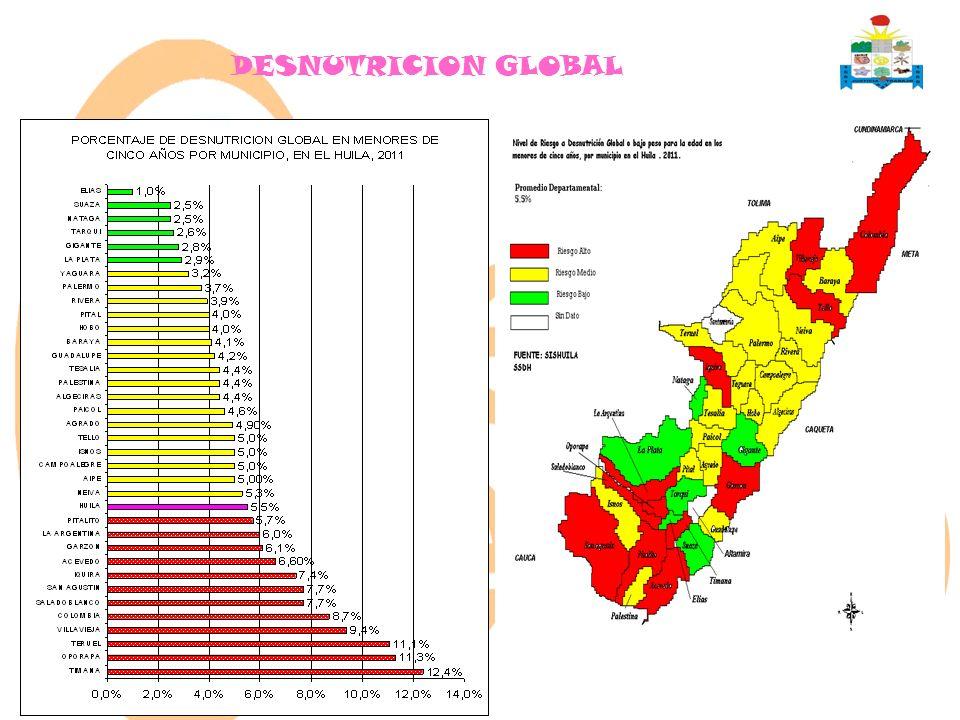 DESNUTRICION GLOBAL