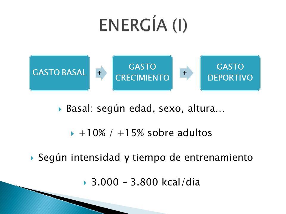 Basal: según edad, sexo, altura… +10% / +15% sobre adultos Según intensidad y tiempo de entrenamiento 3.000 – 3.800 kcal/día GASTO BASAL + GASTO CRECI