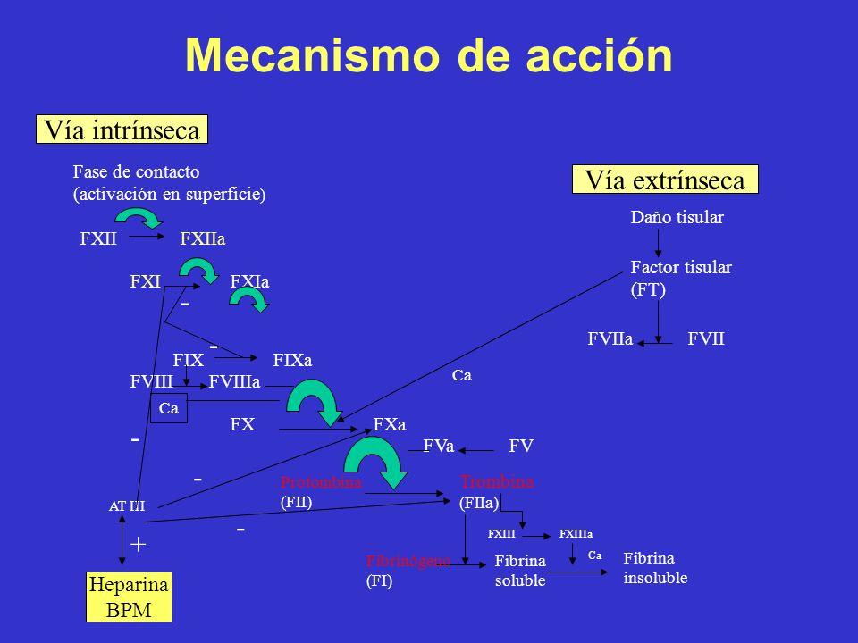 Mecanismo de acción Vía intrínseca Fase de contacto (activación en superficie ) FXII FXIIa FXIFXIa FIXFIXa FXFXa FVIII FVIIIa Ca Protombina (FII) Trom