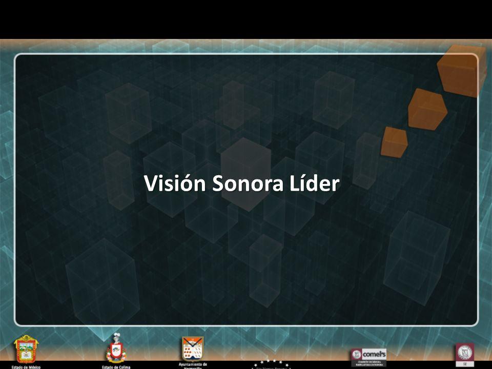 Visión Sonora Líder