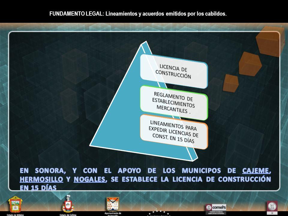 FUNDAMENTO LEGAL: Lineamientos y acuerdos emitidos por los cabildos.