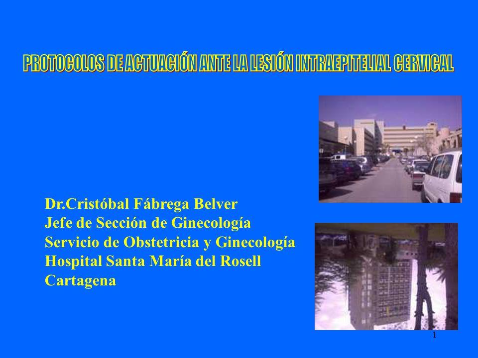 1 Dr.Cristóbal Fábrega Belver Jefe de Sección de Ginecología Servicio de Obstetricia y Ginecología Hospital Santa María del Rosell Cartagena