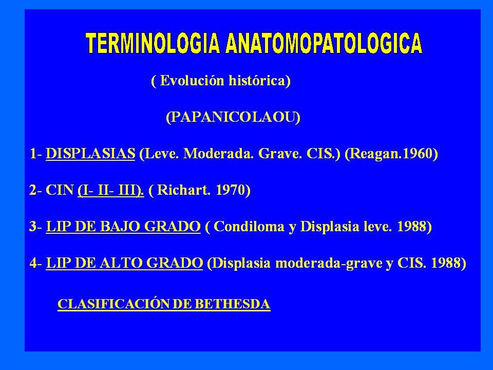 13 CLASIFICACIÓN DE BETHESDA