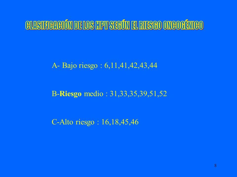 8 A- Bajo riesgo : 6,11,41,42,43,44 B-Riesgo medio : 31,33,35,39,51,52 C-Alto riesgo : 16,18,45,46