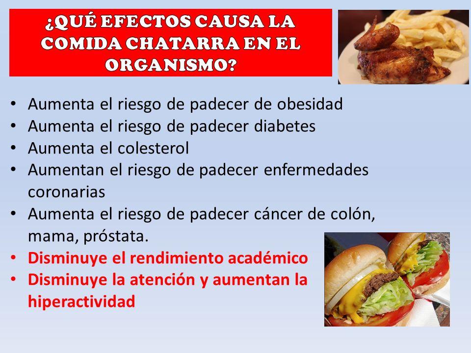 Aumenta el riesgo de padecer de obesidad Aumenta el riesgo de padecer diabetes Aumenta el colesterol Aumentan el riesgo de padecer enfermedades coronarias Aumenta el riesgo de padecer cáncer de colón, mama, próstata.