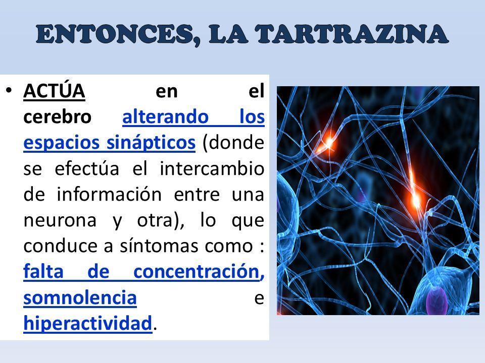 ACTÚA en el cerebro alterando los espacios sinápticos (donde se efectúa el intercambio de información entre una neurona y otra), lo que conduce a síntomas como : falta de concentración, somnolencia e hiperactividad.