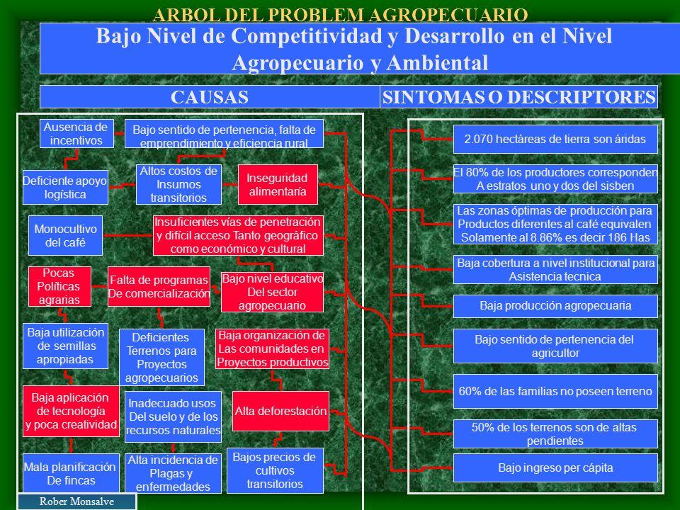 ARBOL DEL PROBLEM AGROPECUARIO Bajo sentido de pertenencia, falta de emprendimiento y eficiencia rural Deficiente apoyo logística Alta deforestación B