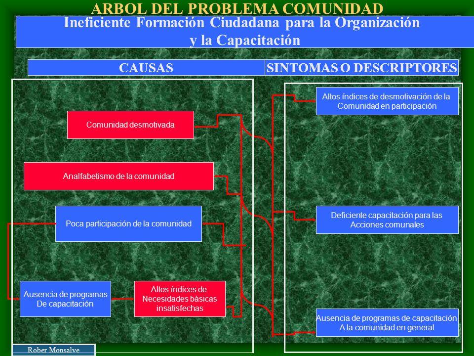 ARBOL DEL PROBLEMA COMUNIDAD Altos índices de Necesidades básicas insatisfechas Poca participación de la comunidad Analfabetismo de la comunidad Comun