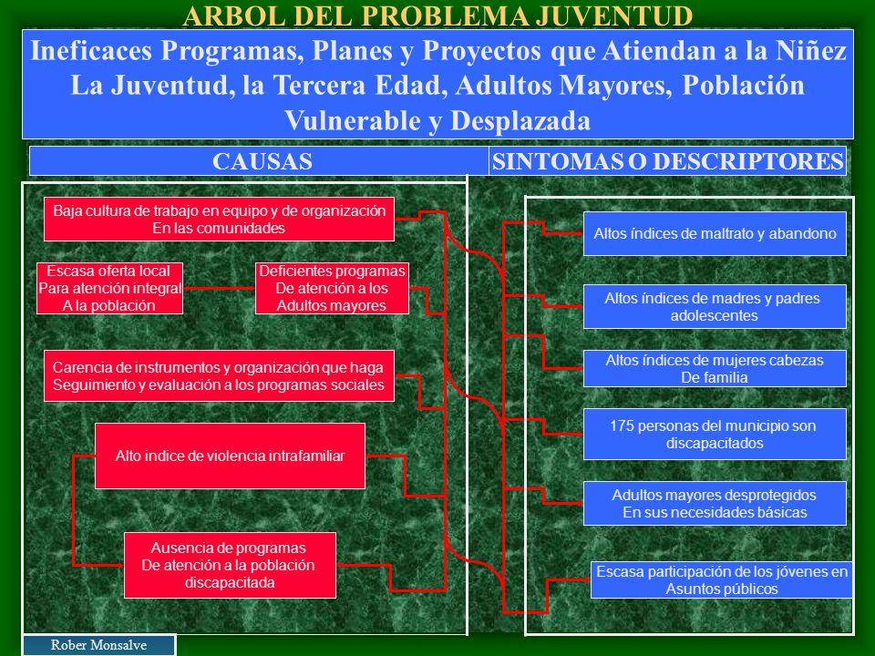 ARBOL DEL PROBLEMA JUVENTUD Baja cultura de trabajo en equipo y de organización En las comunidades Escasa oferta local Para atención integral A la pob