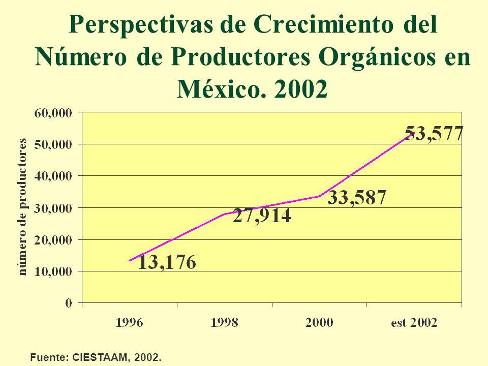 Perspectivas de Crecimiento del Número de Productores Orgánicos en México. 2002 Fuente: CIESTAAM, 2002.