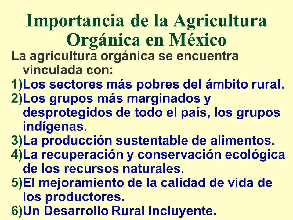 Importancia de la Agricultura Orgánica en México La agricultura orgánica se encuentra vinculada con: 1)Los sectores más pobres del ámbito rural. 2)Los