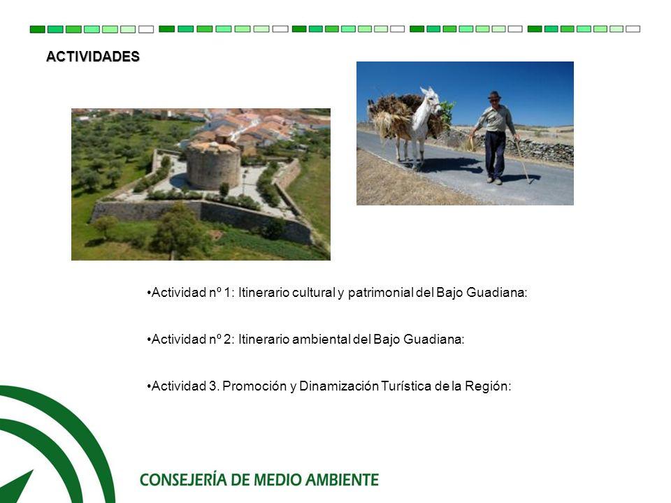 - Áreas de descanso e Interpretación del Paisaje ACTIVIDADES DESARROLLADAS POR LA CONSEJERÍA DE MEDIO AMBIENTE 4.- PROYECTOS PILOTOS: Área de descanso de la Cañada Real de Medellín (Aroche) Área de descanso de la Vereda del Rosal a Paymogo (Santa Bárbara de Casa) Área de descanso de la Vereda de Valleslargos (Paymogo)