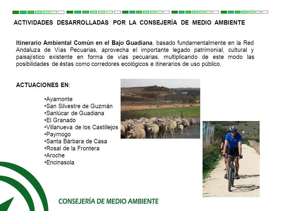 ACTIVIDADES DESARROLLADAS POR LA CONSEJERIA DE MEDIO AMBIENTE ACCIONES: Definición de la red de itinerarios necesarios para articular territorialmente el patrimonio natural del Bajo Guadiana.