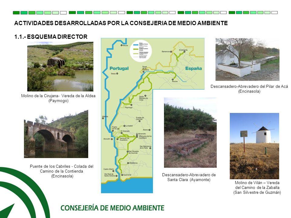 ACTIVIDADES DESARROLLADAS POR LA CONSEJERIA DE MEDIO AMBIENTE 1.2.- PUNTOS RELEVANTES DEL ESQUEMA DIRECTOR ELEMENTOS NATURALES: Río Guadiana El Parque Natural Sierra de Aracena y Picos de Aroche El Paraje Natural de Sierra Pelada y Ribera del Aserrador Embalse y Ribera del Chanza.