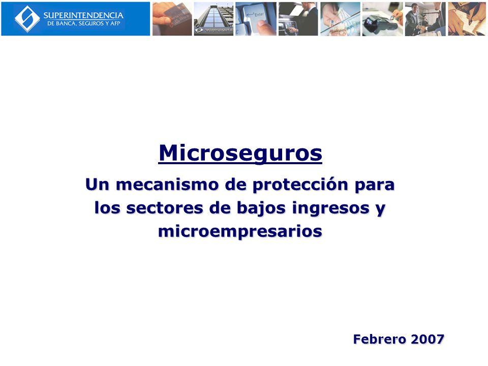 Microseguros Un mecanismo de protección para los sectores de bajos ingresos y microempresarios Febrero 2007