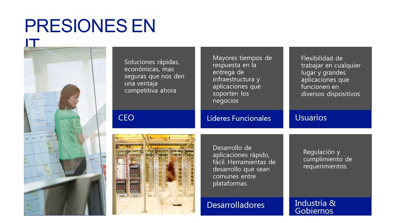 Help us… CEO Líderes Funcionales UsuariosDesarrolladores Industria & Gobiernos