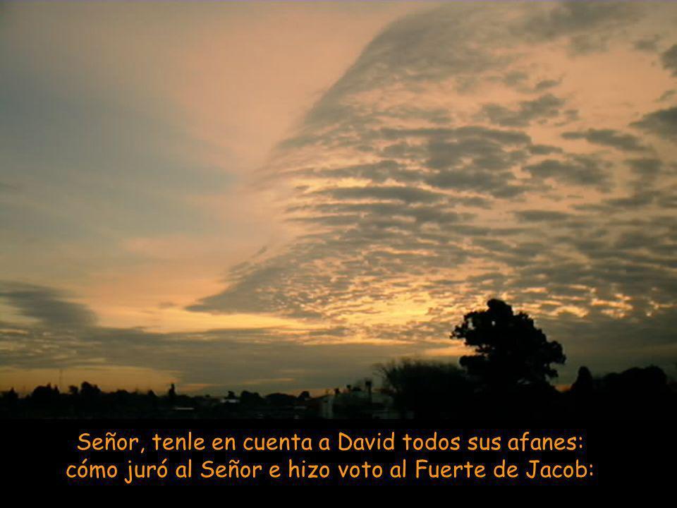 Este Salmo rememora el traslado del Arca de la Alianza al monte Sión (2 Sam. 6. 12-19). Las dos partes que lo integran se corresponden en perfecto par