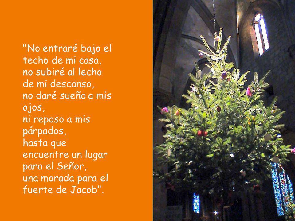 Señor, tenle en cuenta a David todos sus afanes: cómo juró al Señor e hizo voto al Fuerte de Jacob: