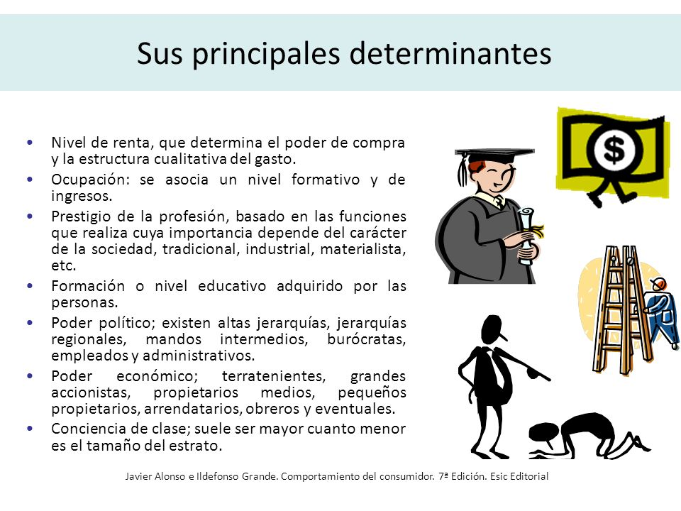 Sus principales determinantes Nivel de renta, que determina el poder de compra y la estructura cualitativa del gasto. Ocupación: se asocia un nivel fo