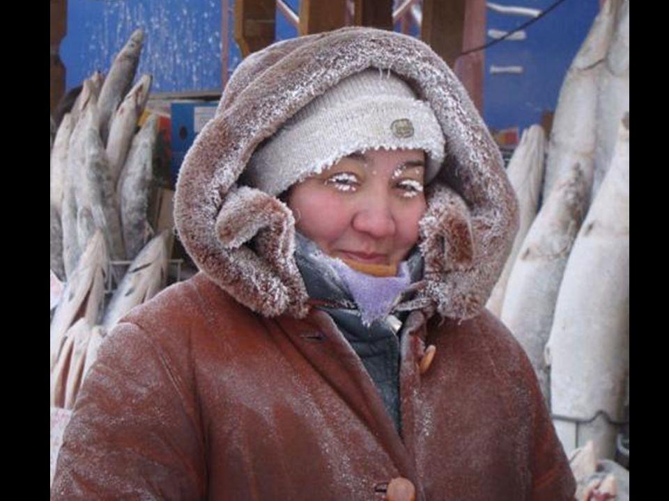 Yakutsk: La ciudad más fría del mundo 5ºC bajo 0 pueden ser refrescantes. A 20ºC bajo 0 la humedad en la nariz se congela y es difícil no toser. A 35º