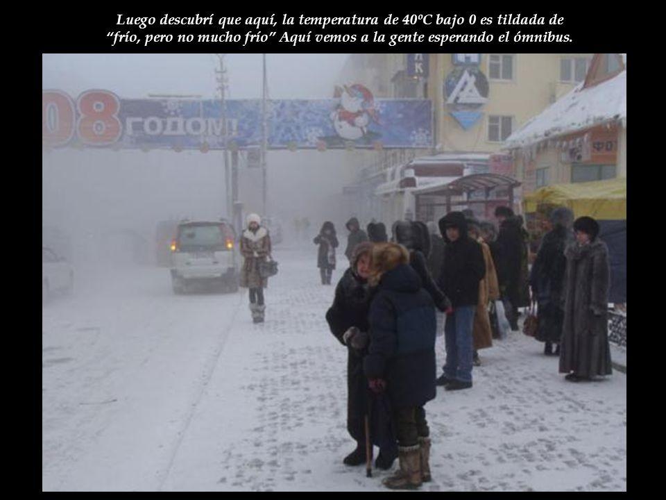 Luego descubrí que aquí, la temperatura de 40ºC bajo 0 es tildada de frío, pero no mucho frío Aquí vemos a la gente esperando el ómnibus.