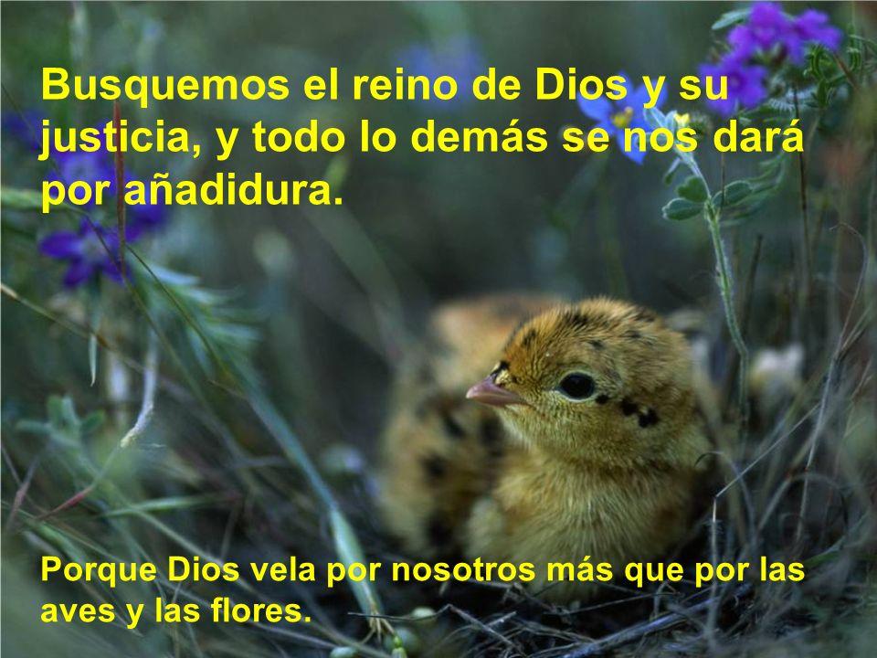 Esta confianza viene de que Dios es nuestro Padre y camina con nosotros en esta vida.
