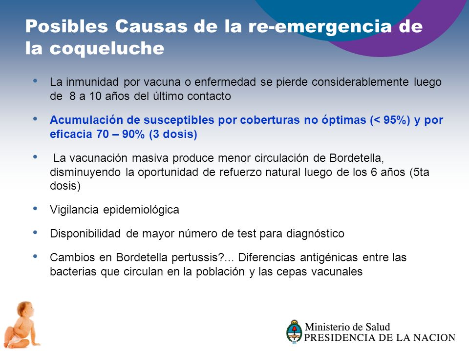 Posibles Causas de la re-emergencia de la coqueluche La inmunidad por vacuna o enfermedad se pierde considerablemente luego de 8 a 10 años del último