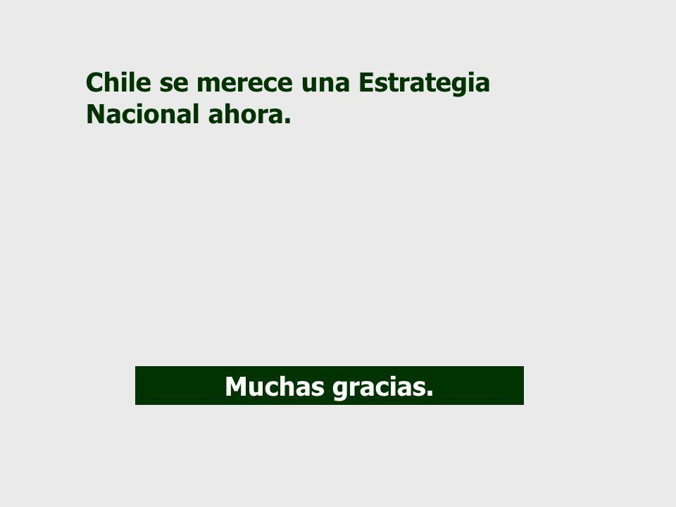 Chile se merece una Estrategia Nacional ahora. Muchas gracias.