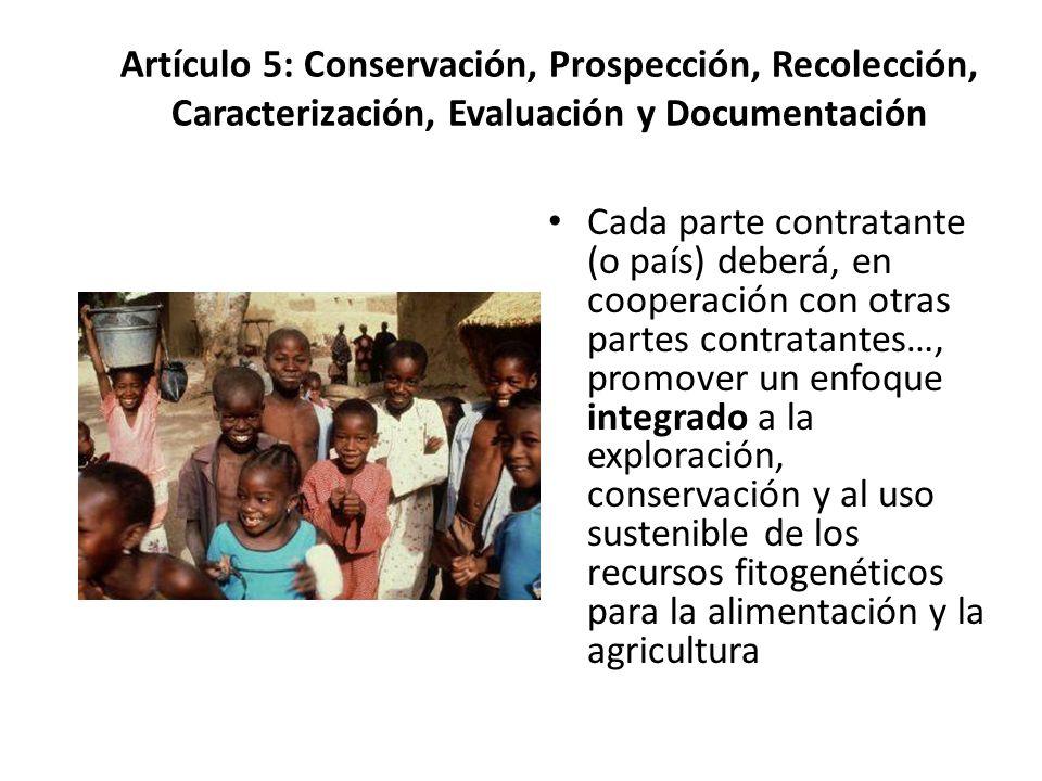 Artículo 5: Conservación, Prospección, Recolección, Caracterización, Evaluación y Documentación Cada parte contratante (o país) deberá, en cooperación