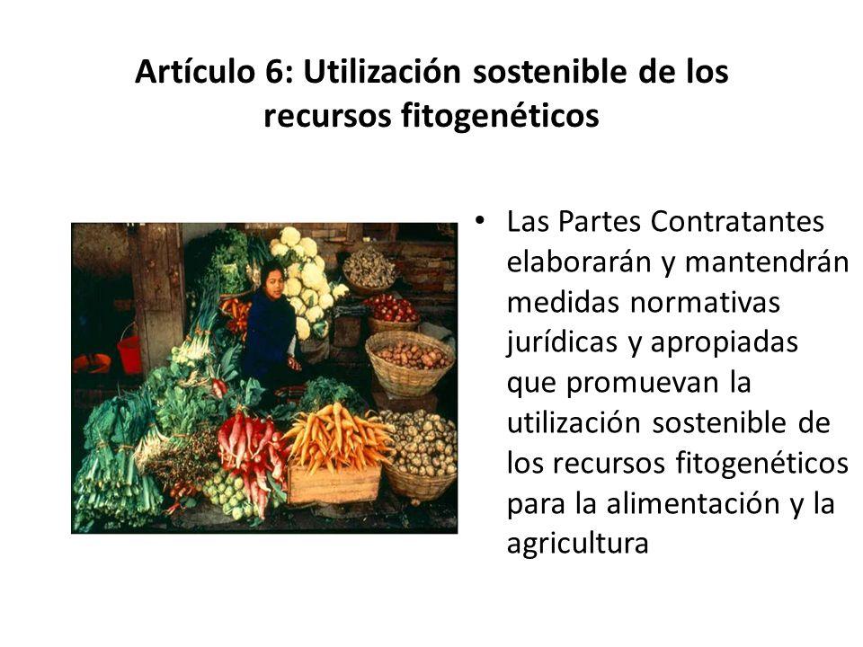 Artículo 6: Utilización sostenible de los recursos fitogenéticos Las Partes Contratantes elaborarán y mantendrán medidas normativas jurídicas y apropi