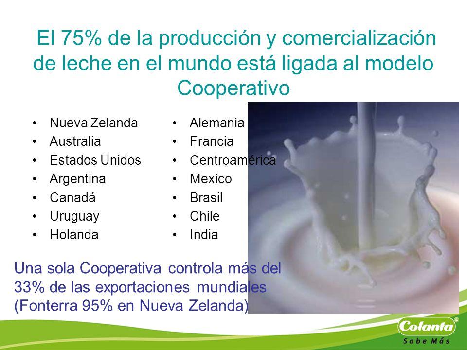 El 75% de la producción y comercialización de leche en el mundo está ligada al modelo Cooperativo Nueva Zelanda Australia Estados Unidos Argentina Can